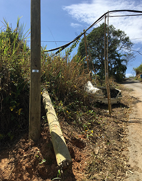 Center: utility pole snapped by Hurricane Maria. Right: Bamboo poles serve as makeshift solution to hold up communications lines. Left: newly-installed pole.